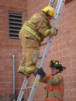 Ladders_1.jpg