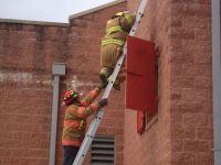 Ladders_2.jpg